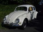 Volkswagen oval window bug painted white