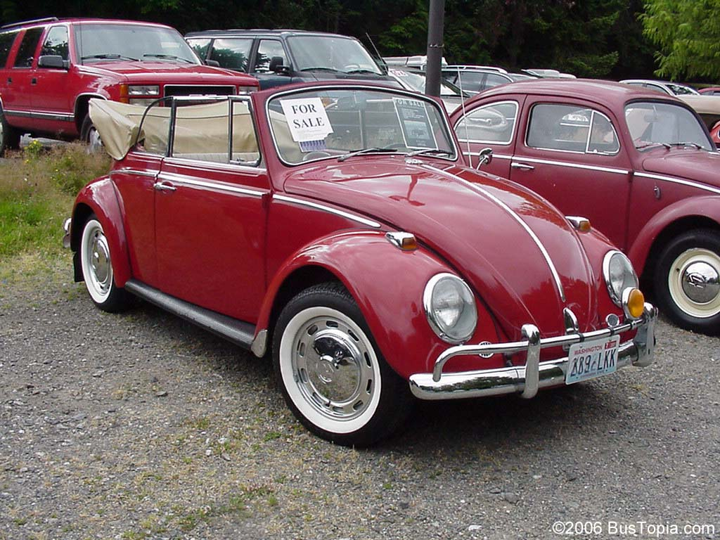 Convertible Volkswagen Beetle >> Restored Vintage Volkswagen Bugs (1958 - 1967) from Bustopia.com