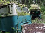 Secret VW junkyard With Volkswagen Bay Window Bus with OG Paint in Great Condition