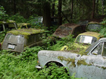 Forgotten VW Wrecking Yard With Volkswagen Squareback Wagons