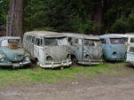 VW Wrecking Yard has a Collection of Early Volkswagen Splitties For Restoration